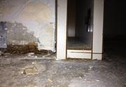Water Damage Services in Bradenton | ServiceMaster Restorations
